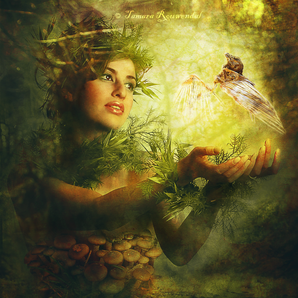 Return to Nature by tamaraR