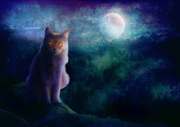 Nighttime Adventure by tamaraR