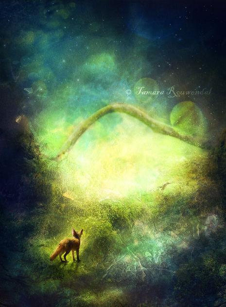 Little Fox's Grand Adventure by tamaraR