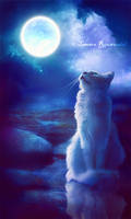 Moonlit Night by tamaraR