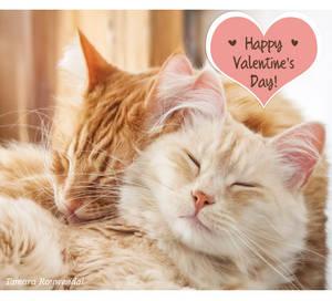 Valentine Pip and Bink by tamaraR