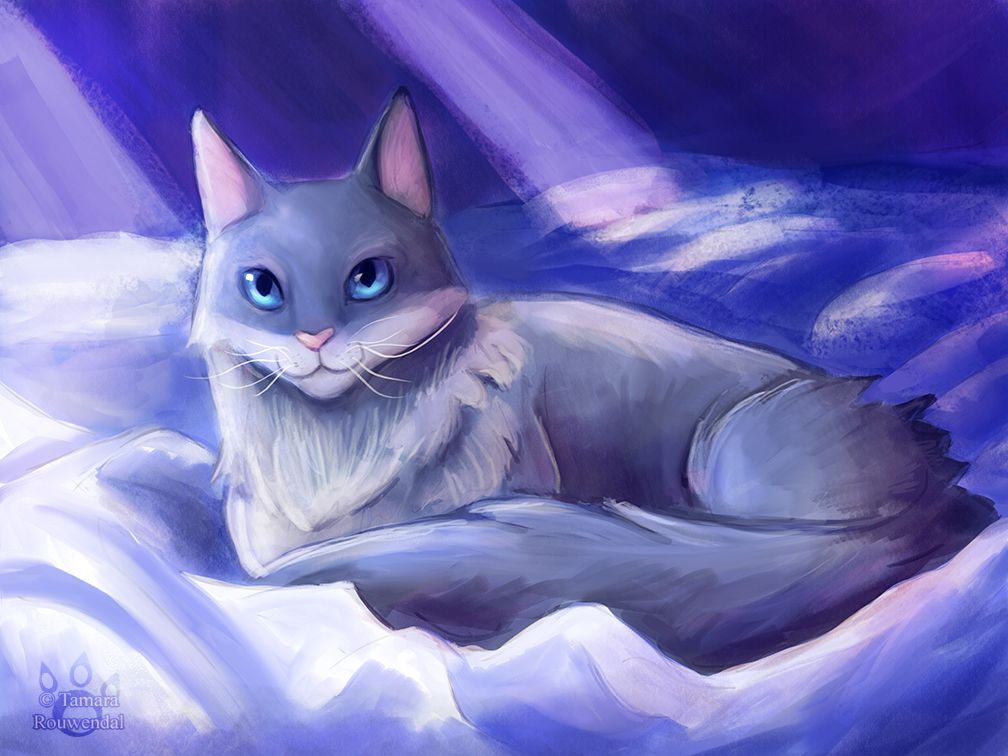 Night cat by tamaraR