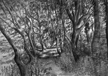 Sketch: spring undergrowth by lithyeld