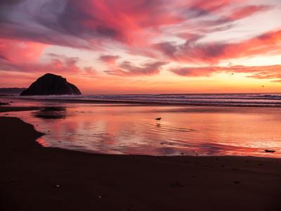 Beach Sunset by Aurelia2011