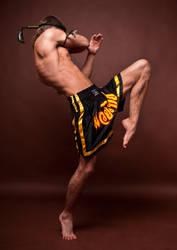 Spirit of Fighting by vishstudio