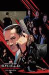 Agents of SHIELD Landmark 100th Ep S2 Art Poster
