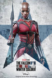 Falcon and Winter Soldier Ayo Poster