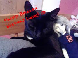 Happy Belated Birthday Liesel!