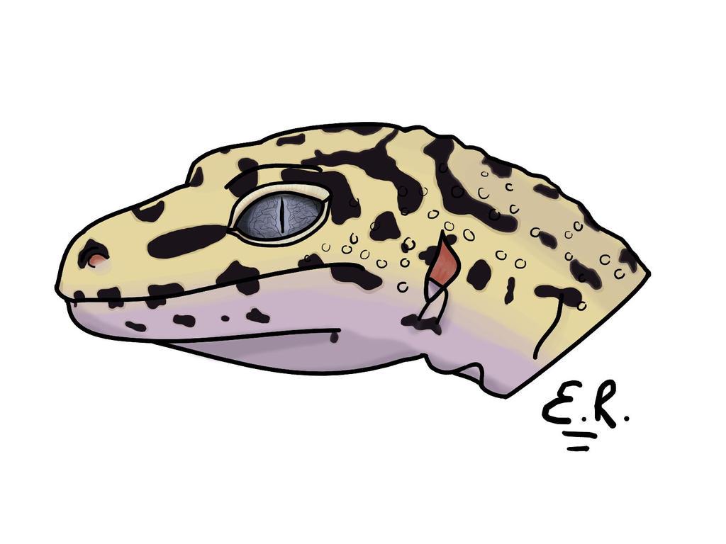 Leopard gecko by PixelSpring
