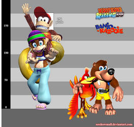 DKR DS: Adult Tiny Kong