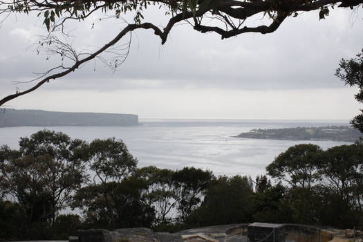 Australian Water 1186