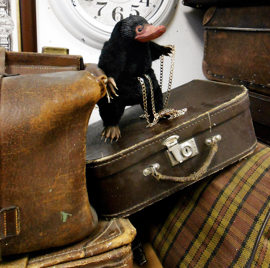 Niffler,fantastic beasts and where to find them by MelvonAndReine