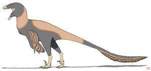 Dakotaraptor steini by King-Edmarka