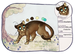 Drizzlepaw reference