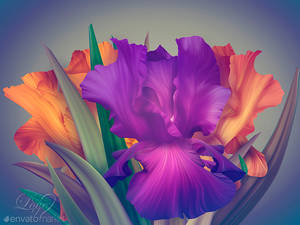 Fantasy Irises for contest on Envato.