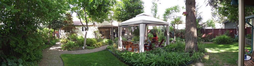 Garden by TomWG