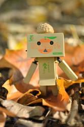 Danbo: Autumn walk by Llama-ru