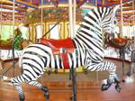 Carousel Zebra