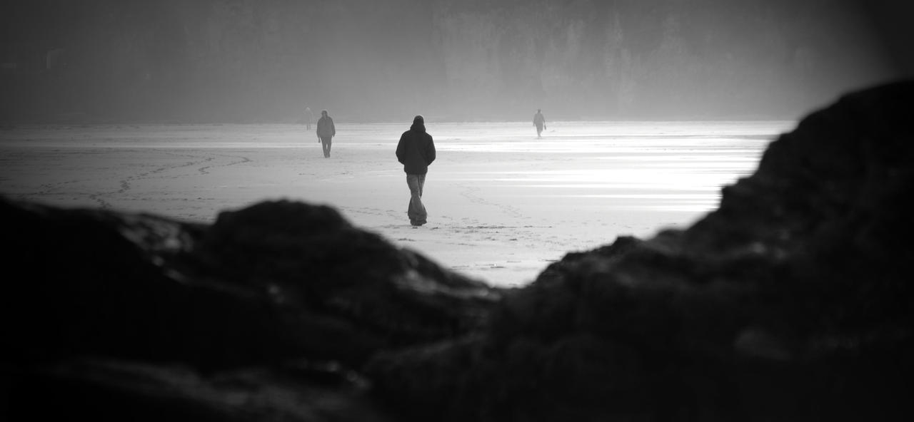 Winter Walk by hellfire321