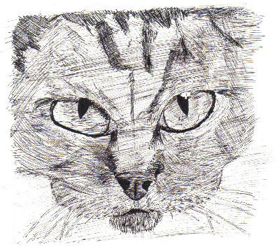 animal drawings by hellfire321