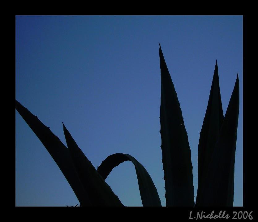 Spikey Twilight by hellfire321