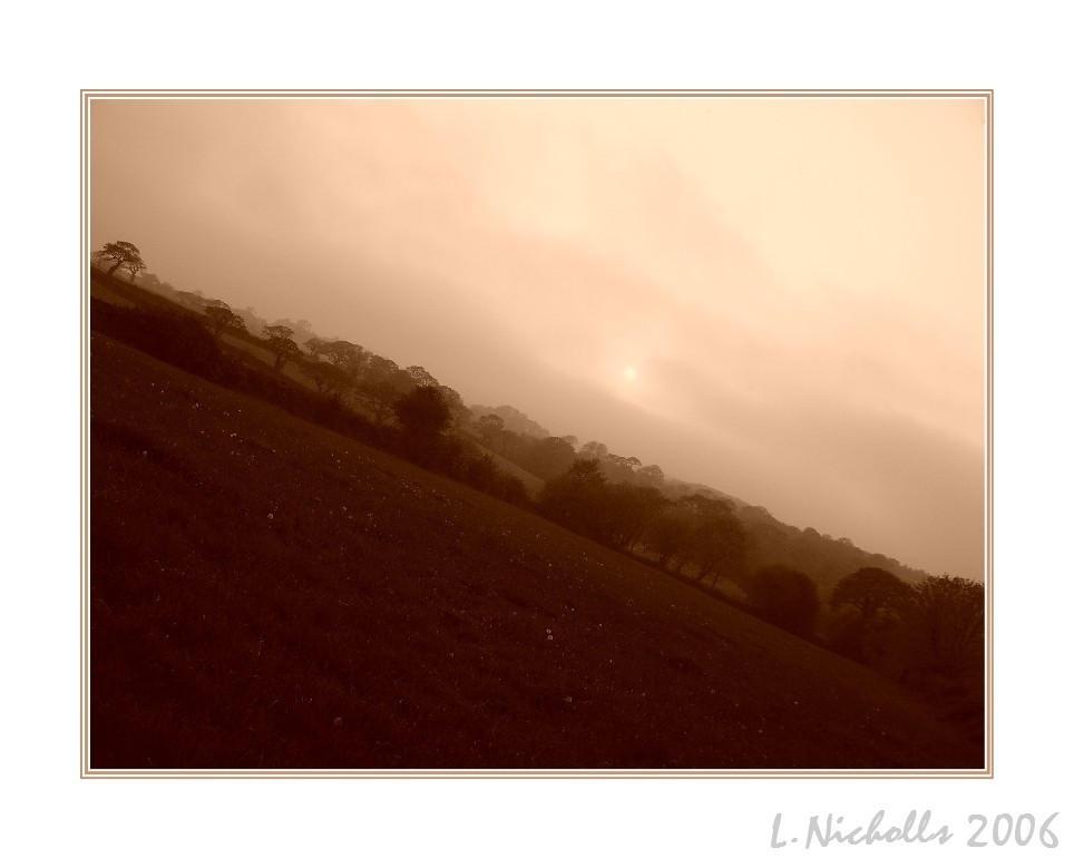 Misty by hellfire321