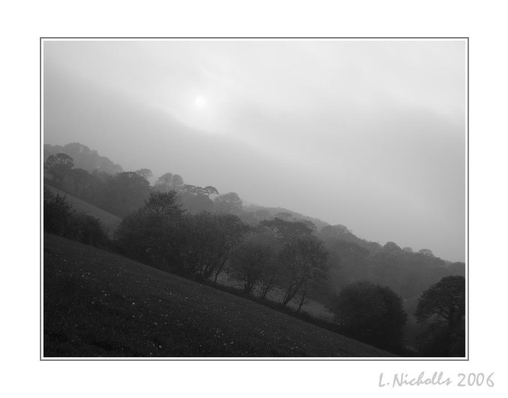 Mist by hellfire321