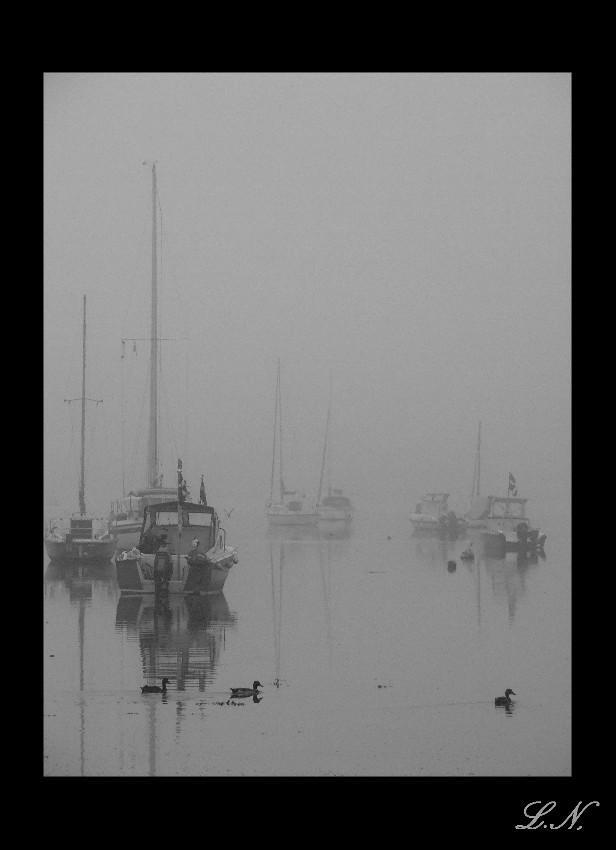 Misty River by hellfire321