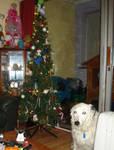 my christmas treeee XD