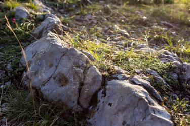 Detail of stones
