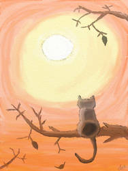 Fall Cat by tatsuyasaverem