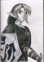 Link from the new Zelda by TheEclipse
