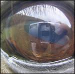 Horse's Eye View-Da-agon Sep.