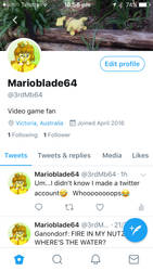 Marioblade64's Twitter by MarioBlade64