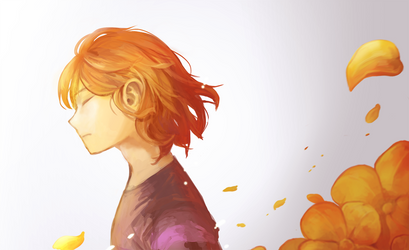 Looking at the golden flowers