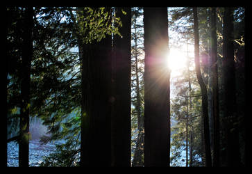 Nairn Falls Pemberton BC 03.11.11 by Solexia