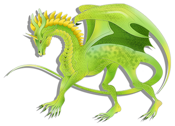 Forest dragon by Nicole-Ennet