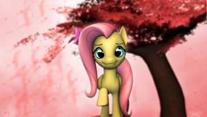 Fluttershy's Blossom