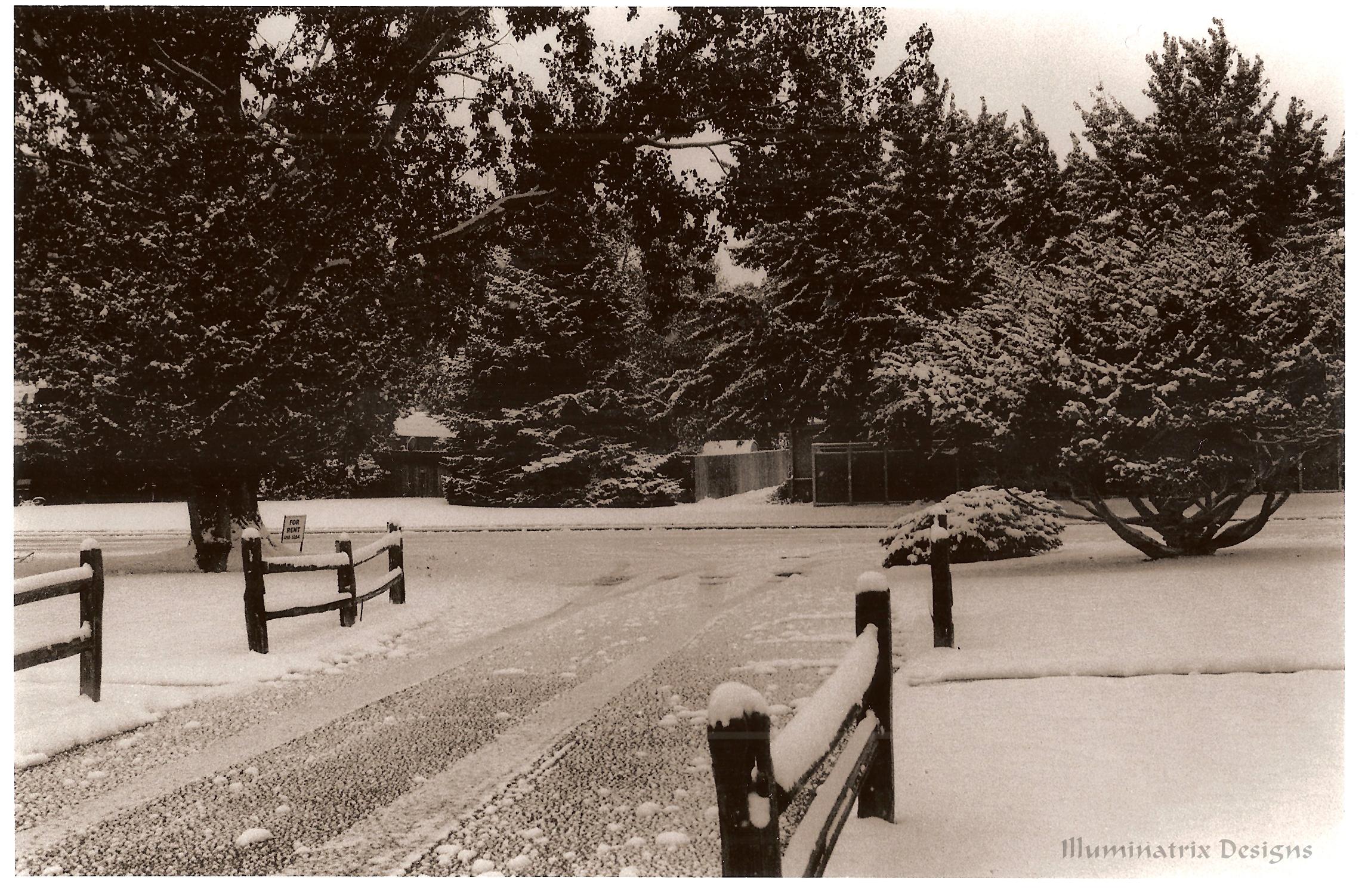 Winter by Dre72