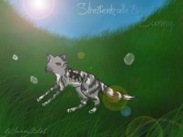 Streifenkralle und Sunny. by SunnyBlub