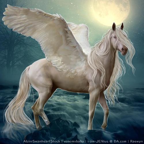 White Pegasus