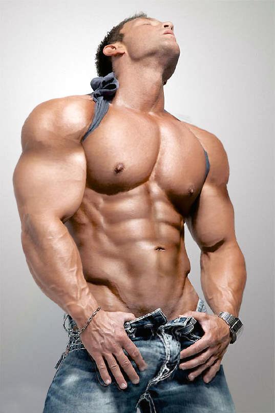 Muscle gay sex - XNXX. COM