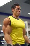 Nice Arms 8