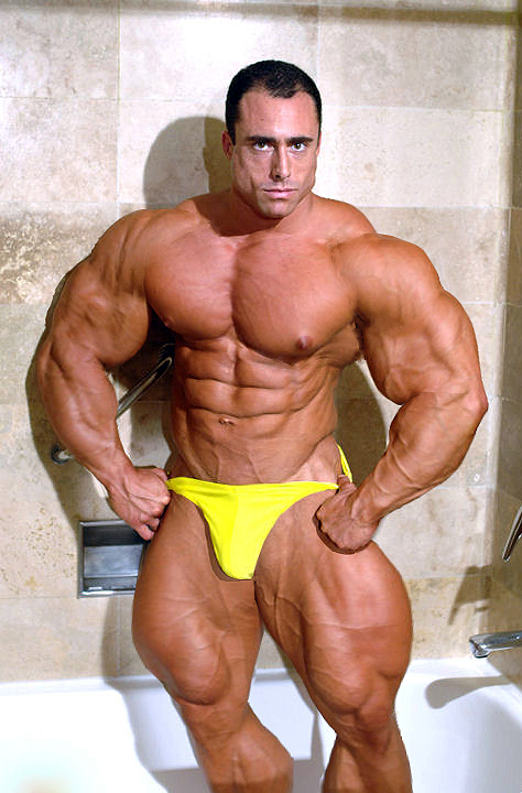 Bodybuilder Photo Gallery Bodybuilder Picture Gallery