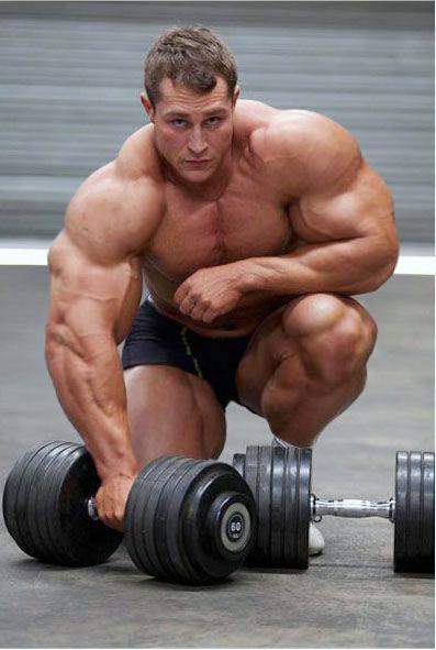 Bodybuilder 337 by Stonepiler