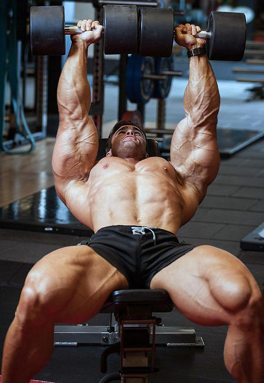 Bodybuilder 338 by Stonepiler