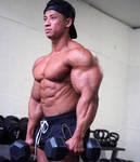 Nice Arms 25