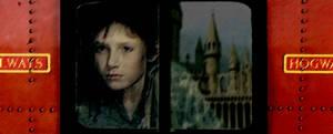 Tom Marvolo Riddle on the Hogwarts Express
