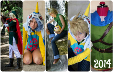 Cosplays of 2014