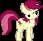 Rose Sidelong Look
